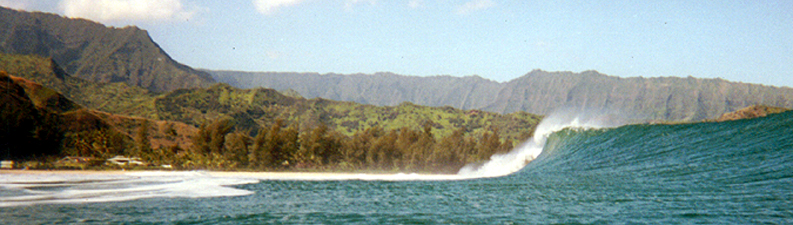 EPIC PINETREES, HANALEI BAY, KAUAI  MARCH 2001  15-30' SWELL